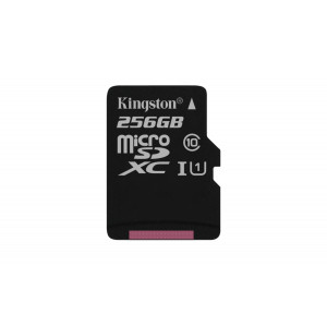 Kingston 256GB microSDXC