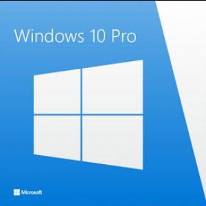 Windows 10 PRO installation net2world